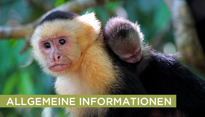 Allgemeine Informationen.Costa Rica