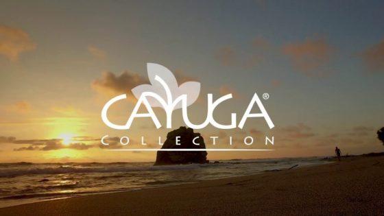 """Die Cayuga Hotels suchen Travel Heroes:  Jetzt teilnehmen am großen """"Cayuga Gratitude-Gewinnspiel"""" und eine Reise mit den Cayuga Hotels in Costa Rica gewinnen!"""