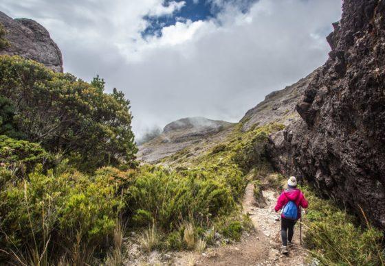 Le parc national Chirripó