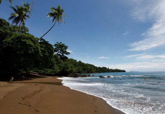 Le Parc National du Corcovado et Bahia Drake