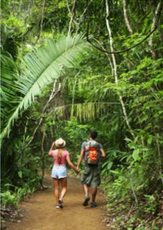 Le Costa Rica : Un paradis vert qui séduit toujours plus de visiteurs !