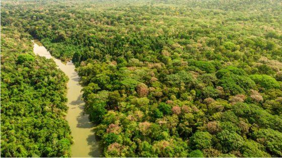 Un mois – un parc : Le Parc National de Corcovado