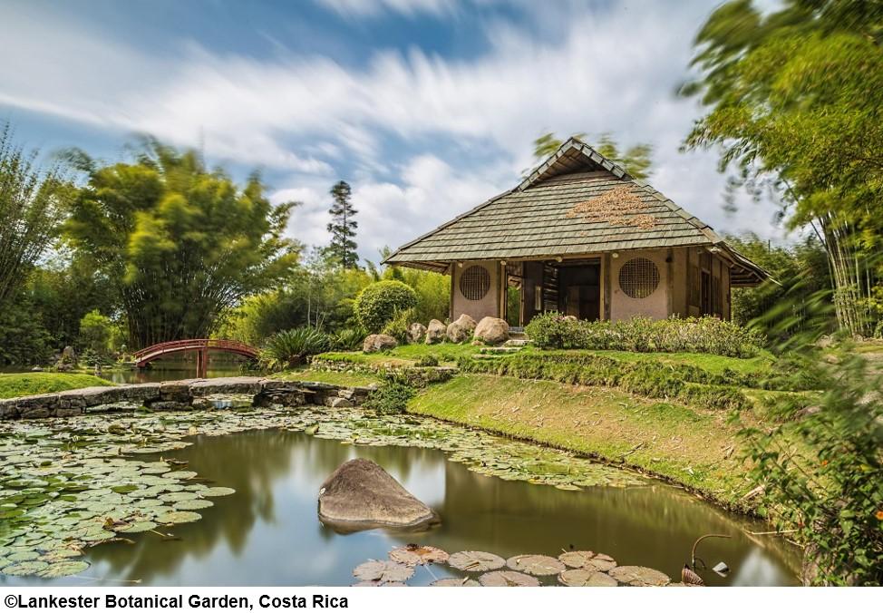 Rendez-vous au jardin botanique Lankester