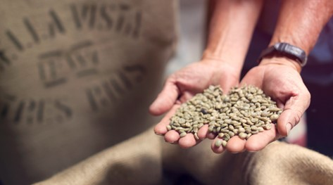 Le saviez-vous ? Les visites guidées dans les plantations de café au Costa Rica