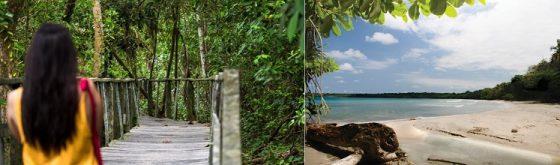Un Mois un Parc: Le Parc National Cahuita