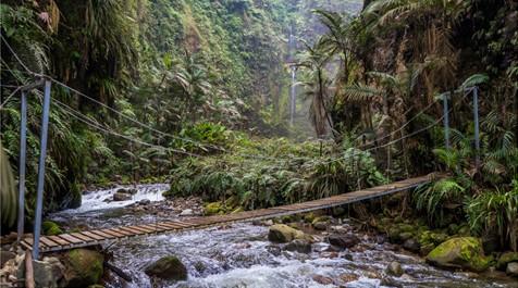 Hors des sentiers battus : Les endroits de rêve au Costa Rica pour faire des randonnées