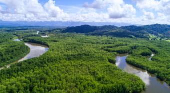 Costa Rica named 'UN Champion of the Earth'