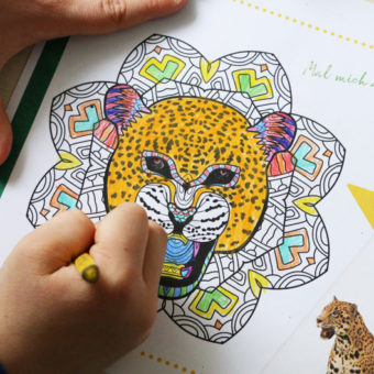 Costa Rican colouring and activity book – Free Download