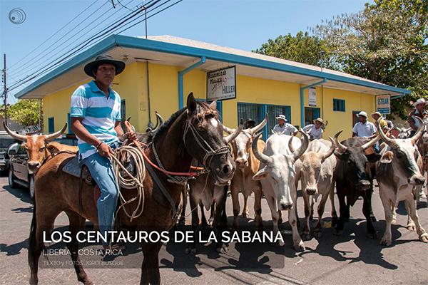 costa-rica_los-centauros-de-la-sabana