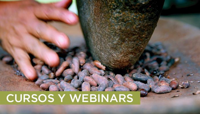 cursos y webinars. Costa Rica