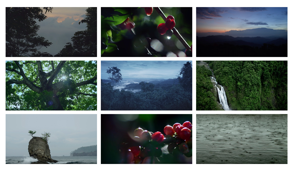 Fotogramas del spot Blue Sérum Chanel inspirado en Costa Rica