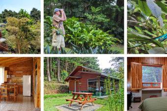 Los Pinos – Cabañas y Jardines. Monteverde