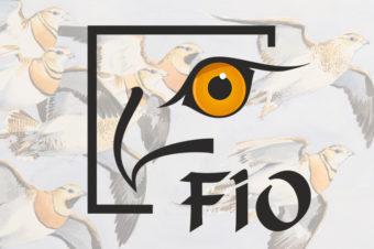Costa Rica país invitado en la Feria Internacional de Ornitología de Extremadura
