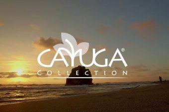 PARTICIPA Y GANA EL REGALO DE GRATITUD DE HOTELES CAYUGA