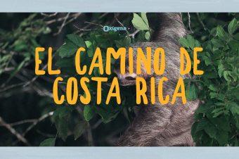 """""""El Camino de Costa Rica"""", el proyecto de turismo rural de costa a costa"""