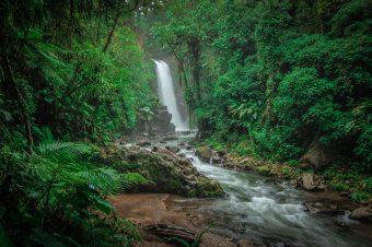 Costa Rica nominada como finalista para los Earthshot Prize