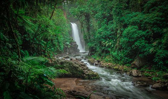 Costa Rica es líder mundial en producción de electricidad con fuentes limpias